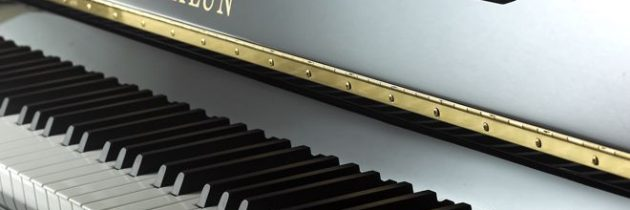 Brig's Pick of the Week!  The Hailun 121 Upright Piano!