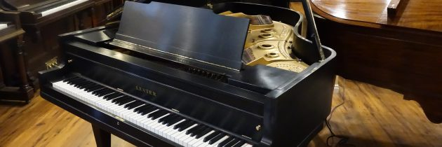 Just out of the shop! 1924 Lester 6′ Grand Piano