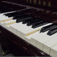 The piano that plays itself – QRS Player Technology